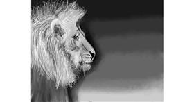 Drawing of Lion by ELLE