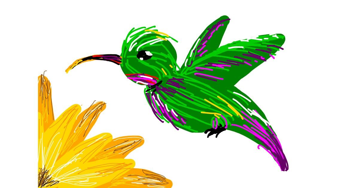 Hummingbird drawing by Ur Mom