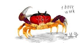 Crab drawing by Numi