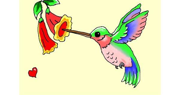 Hummingbird drawing by InessaC