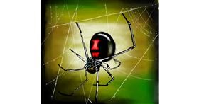 Spider drawing by 🌏rhythm💐