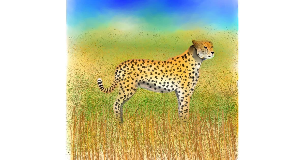 Cheetah drawing by 🇭🇰 Acem Lam