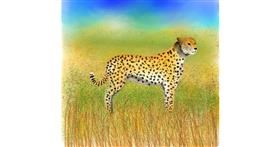 Drawing of Cheetah by 🇭🇰 Acem Lam