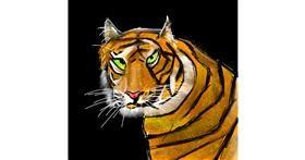 Tiger drawing by Rash