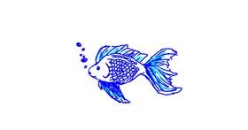 Fish drawing by Anonymous