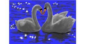 Swan drawing by Kaddy