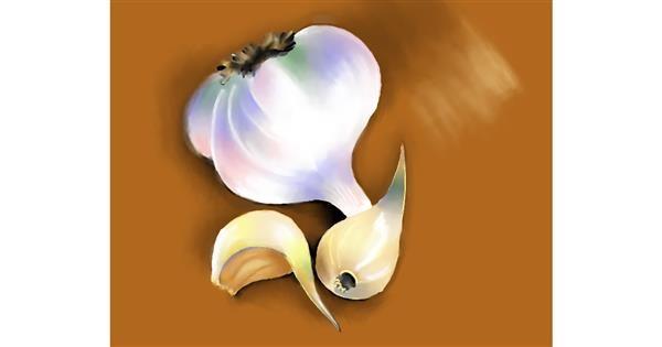 Garlic drawing by Cec