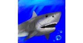 Shark drawing by MiRaCuLoUs🐞