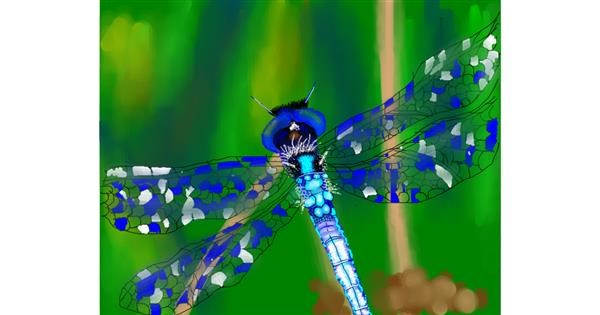 Dragonfly drawing by Mitzi