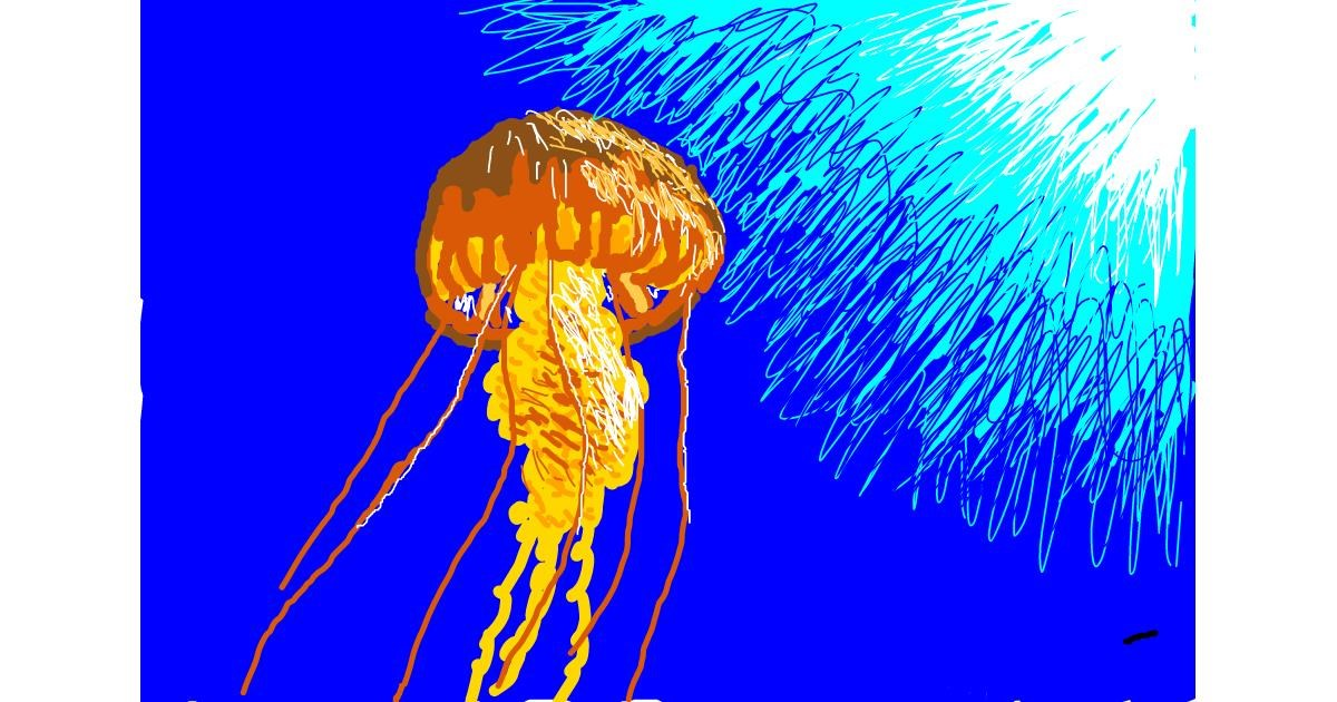 Jellyfish drawing by The536