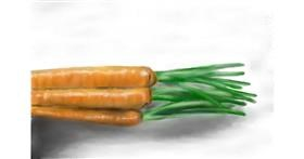 Drawing of Carrot by ELLE