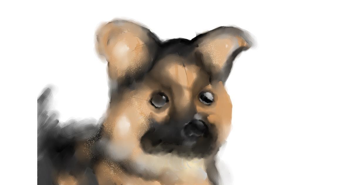 Dog drawing by tamaki