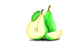 Pear drawing by Sam