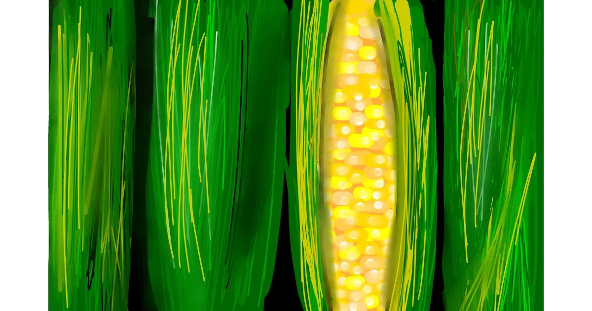 Drawing of Corn by Rose rocket