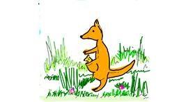 Kangaroo drawing by Lsk
