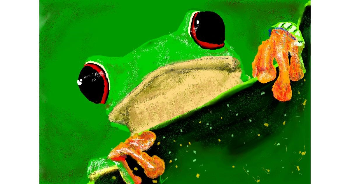Drawing of Frog by teidolo