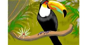 Drawing of Toucan by SAM AKA MARGARET 🙄