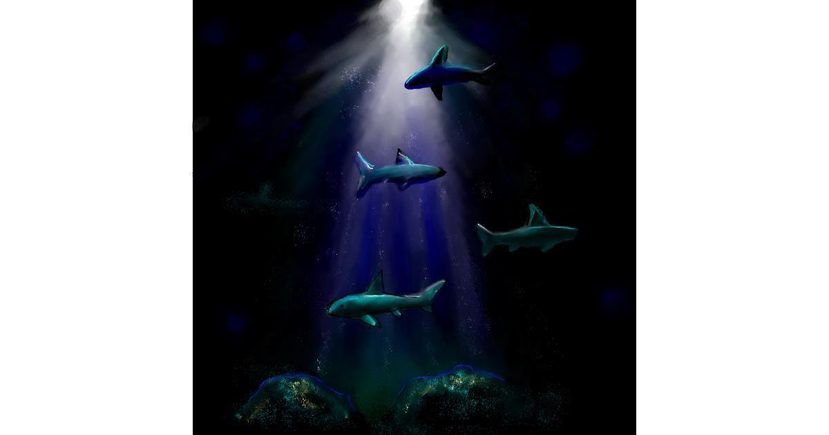 Shark drawing by Leah