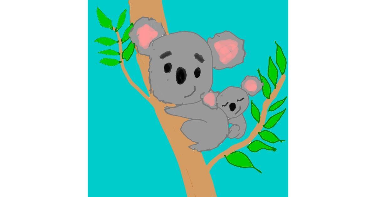 Drawing of Koala by MaRi