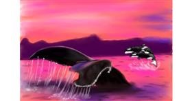 Drawing of Whale by Wizard