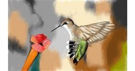 Drawing of Hummingbird by Tim