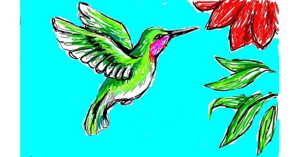 Hummingbird drawing by Sim