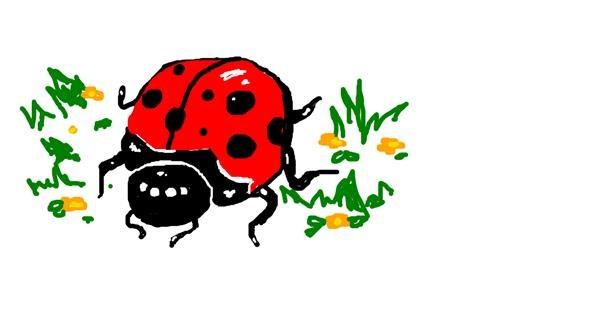 Ladybug drawing by Hahah
