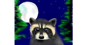 Raccoon drawing by Cec