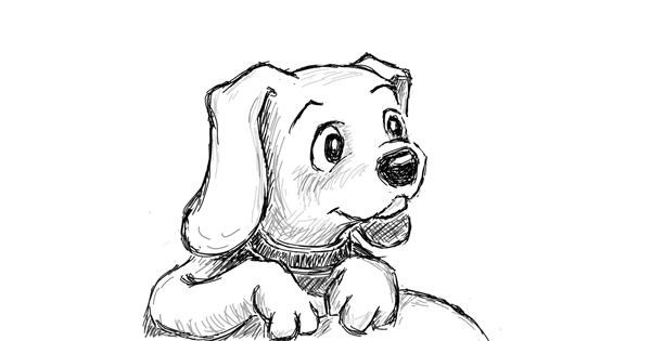 Dog drawing by Coyote