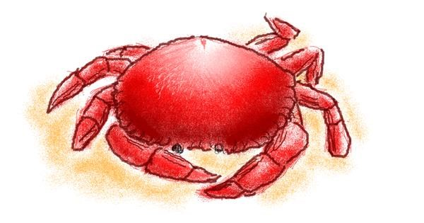 Crab drawing by WindPhoenix