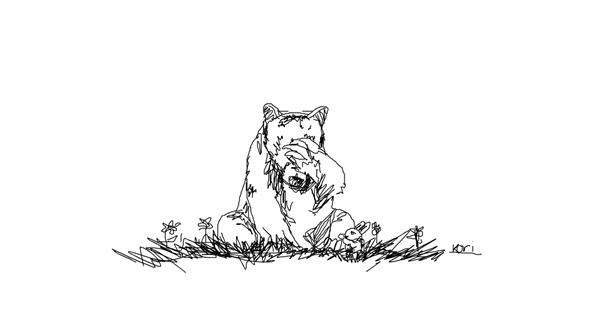 Bear drawing by Kori LOVES Drawing!!