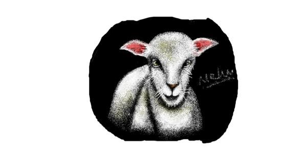 Sheep drawing by I am Period