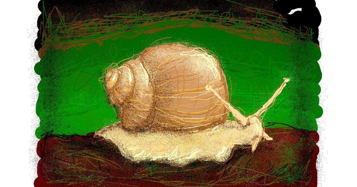 Snail drawing by Paranoia