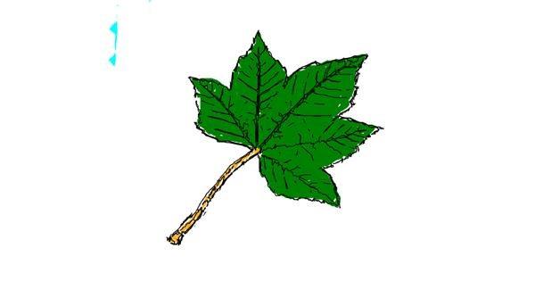 Leaf drawing by Drawn