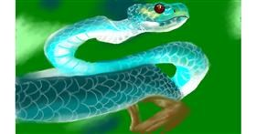 Drawing of Snake by Tim