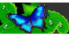 Butterfly drawing by Debidolittle