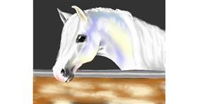 Horse drawing by Cec