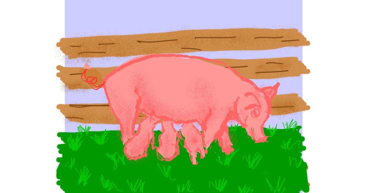 Pig drawing by Cherri