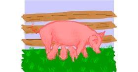 Pig drawing by Cherri
