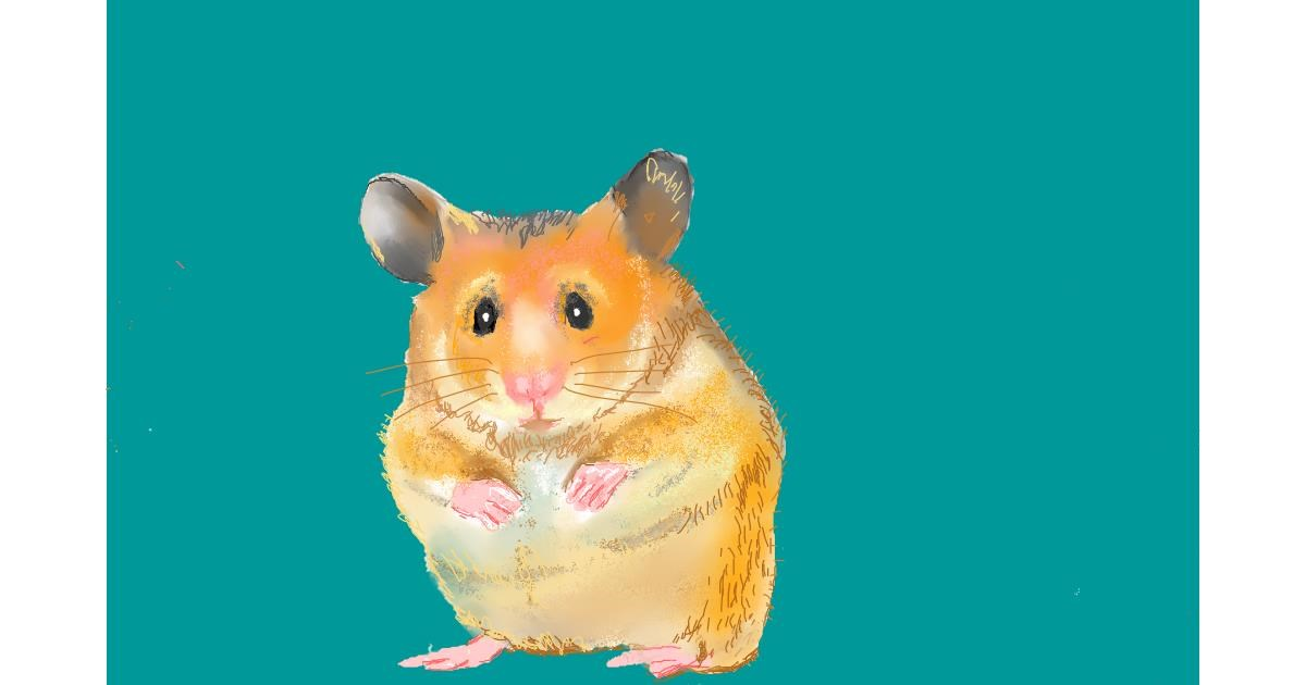 Drawing of Hamster by GJP