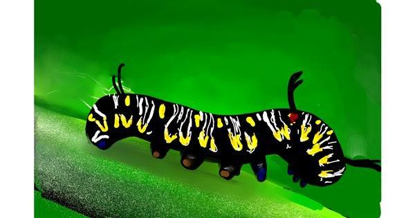 Caterpillar drawing by Rose rocket