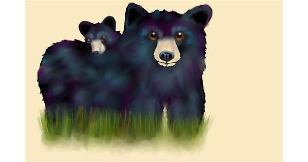 Bear drawing by Pickles