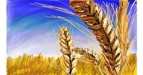 Wheat drawing by Soaring Sunshine