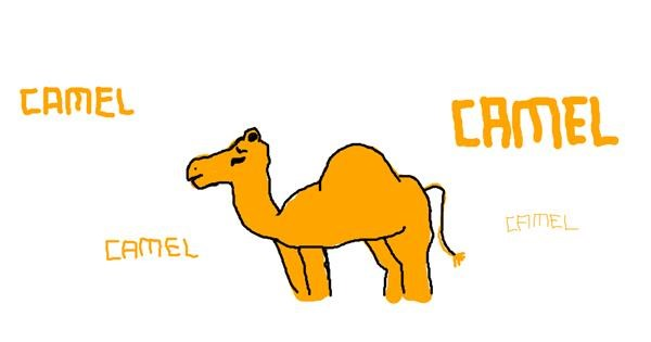 Camel drawing by bob