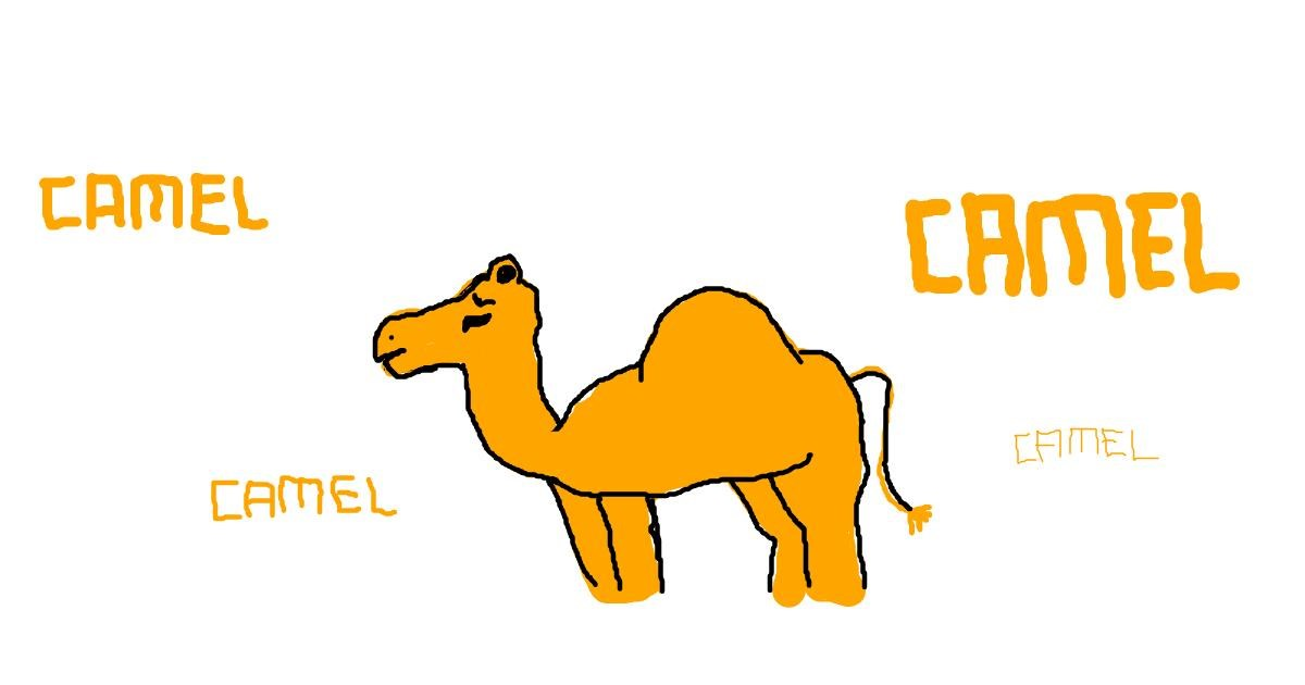 Drawing of Camel by bob