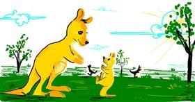 Drawing of Kangaroo by Chicken