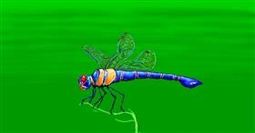 Dragonfly drawing by Sam