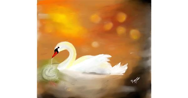 Swan drawing by punee
