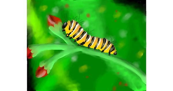 Caterpillar drawing by Zi