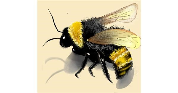 Bumblebee drawing by Namie